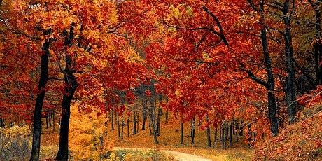 2020 Colors of Fall: New England Tour tickets