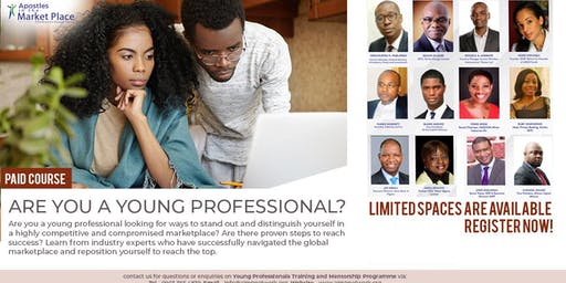 Young Professionals' Training and Mentoring Programme Abuja