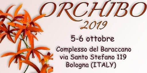 OrchiBo 2019