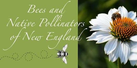 Garden School Series: Bees and Native Pollinators of New England tickets