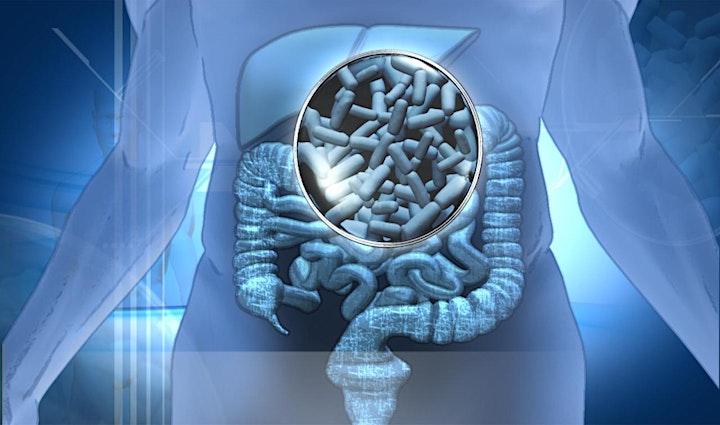 Imagen de Curso de Alimentos Funcionales para la Salud y Nutrición