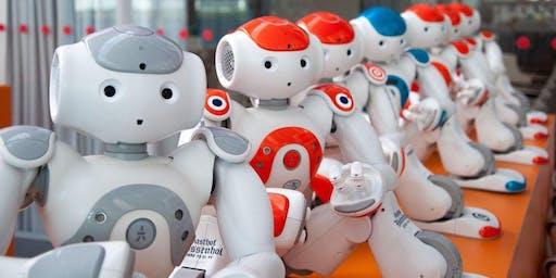 HelloRobot summer camp |8-13 anni|Robotica umanoide!