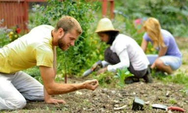 Intro to Permaculture tickets