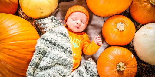 Pumpkin Day Photo Shoots