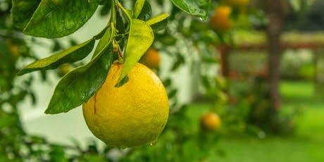 Growing Citrus in the Pacific Northwest - LO tickets