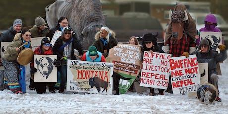 Buffalo Field Campaign Road Show tickets