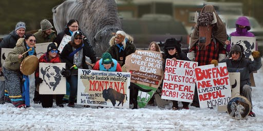 Buffalo Field Campaign Road Show