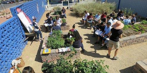 How to Integrate Garden STEAM 101 Teacher Training