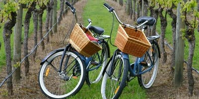 Guided Farm & Wine Country Bike Tour - North Fork, Long Island  (NY) - Under $100