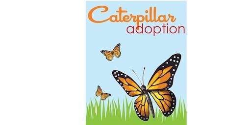 Caterpillar Adoption