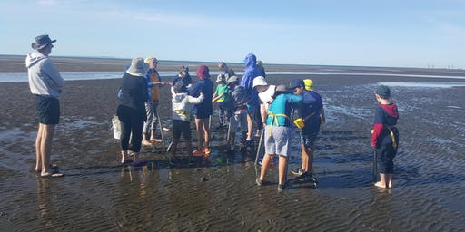 SOLD OUT Fish Wise™ for BCC Active Parks - Nudgee Beach