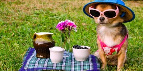 Dog's breakfast at Tregear Reserve - August 2019 tickets