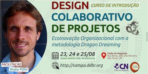 DESIGN COLABORATIVO DE PROJETOS DRAGON DREAMING, São Paulo - SP