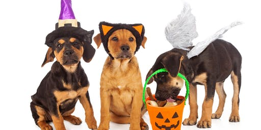 Howl-o-ween Block Pawty 2019!