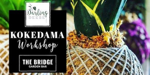 Darling Deere Kokedama Workshop