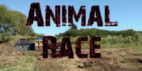 Animal Race entradas