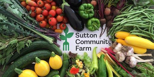 Sutton Community Farm's Harvest Festival 2019