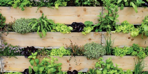 Vertical Gardens, Getting Started