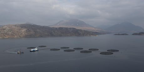 Edinburgh University Aquaculture Industry and Academia Research Brainstorm tickets
