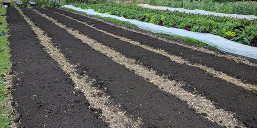 Improving Soil Health on Horticulture Operations - Part 1