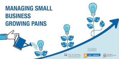 Small Biz Growing Pains - Technology