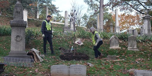 Volunteer: Community Tree Planting - Oak Hill Cemetery