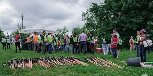 Volunteer: Community Tree Planting - Montrose Park