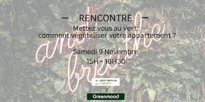 Mettez vous au vert : comment végétaliser votre appartement ?
