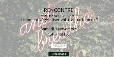 Mettez vous au vert : comment végétaliser votre appartement ? billets