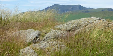 Sustainable Management in the Uplands for Public Goods tickets