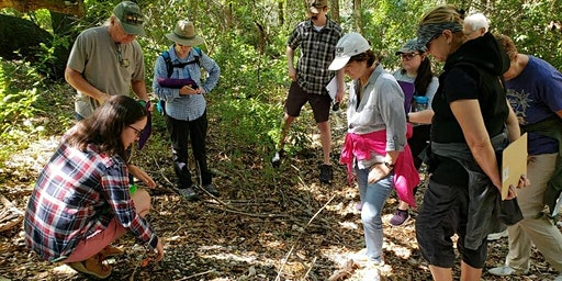 Site-Seeing with an Archaeologist: Native American Sites of Pinellas County