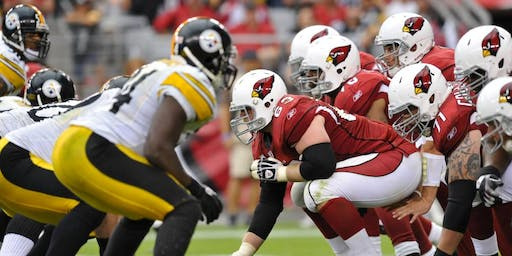Ultimate Fan Experience: Pittsburgh Steelers vs Arizona Cardinals