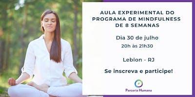 Aula de Mindfulness (GRATUITA) |APENAS A 1º AULA do Programa| Vagas Limitadas