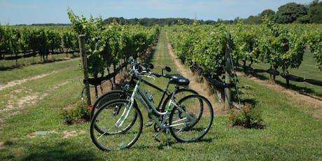 Signature Wine Tasting n Bike Tours in Long Island - $132 tickets
