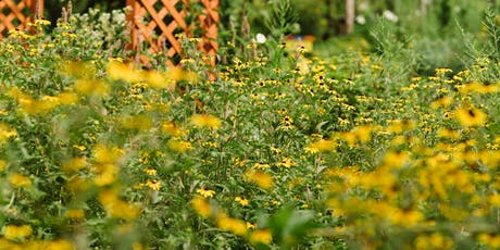 Designing a Healthy Home Landscape Workshop tickets