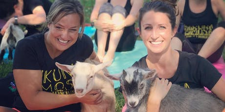 Feels Like OM Sips N' Snuggles SPOOKY Goat Yoga at Buccia Vineyard tickets