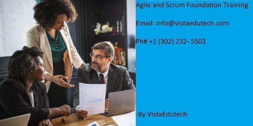 Agile & Scrum Classroom Training in Fayetteville, NC