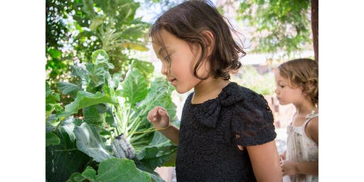 Family Garden Workshop: Plant Anatomy