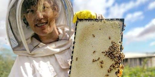 Backyard Beekeeping Workshop Adelaide