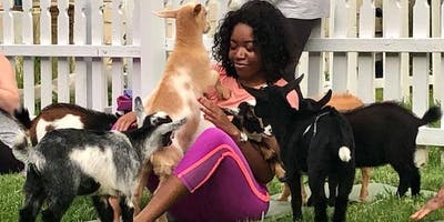 Yoga With Goats, Sun. Aug. 25th at 9:30am