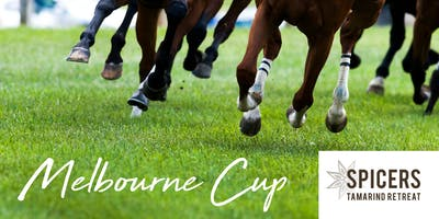 Melbourne Cup in the Forest