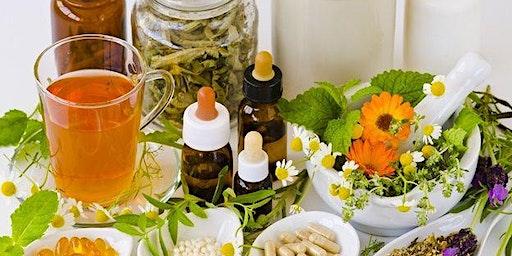 Creating Herbal Remedies – Workshop