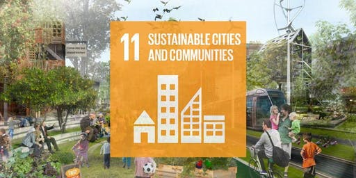 Partnerships for Sustainable Urban Development: Achieving SDG11