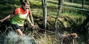 Camp Canis und der Olymp - Das Triple 2020 | Wingst...