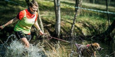 Camp Canis und der Olymp - Das Triple 2020 | Cuxland So, 6. September 2020
