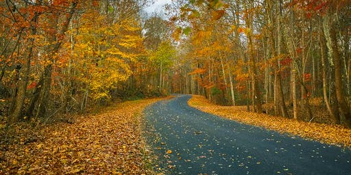 Fall Foliage Weekend Photography Workshop in the Shenandoah National Park