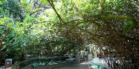Horticulture Tour of The Florida Aquarium tickets