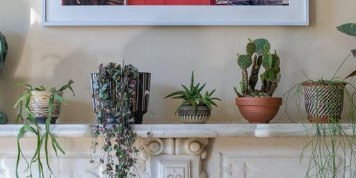 Intro to Plant Parenting: Houseplant Fundamentals