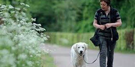 Doggie Night School - Subject: Loose Lead Walking tickets