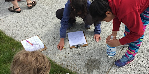 NGSS in Action: Engineering Community Solutions (Tacoma)